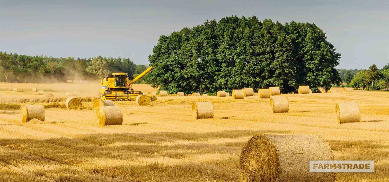 Agro-industrial by-products-Farm4Trade
