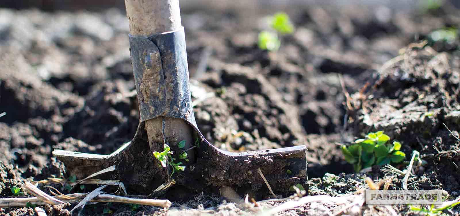Organic farming-Biochar amendment - Farm4Trade