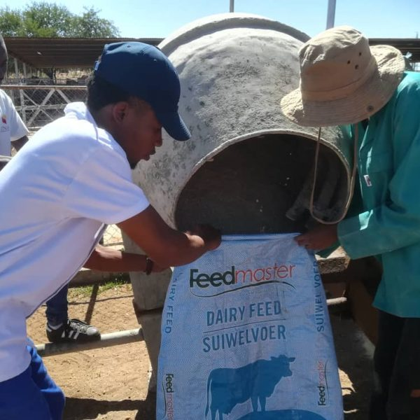Farm4Trade_and_Unam_Feedlot_Challenge_2019_animal_welfare