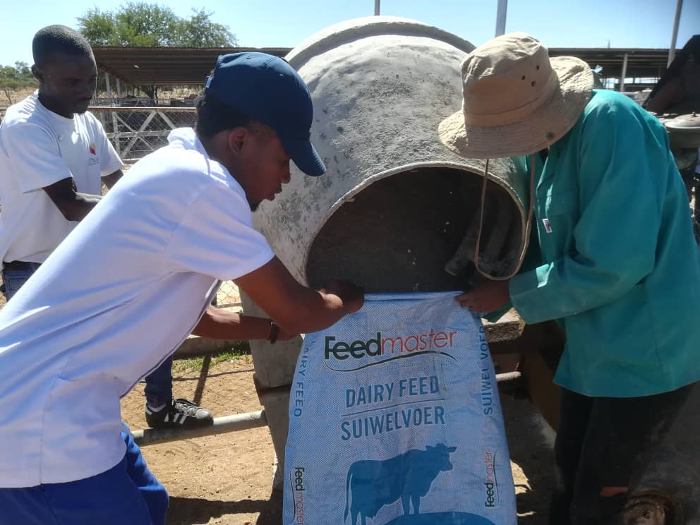 Farm4Trade_and_Unam_Feedlot_Challenge_2019_animal