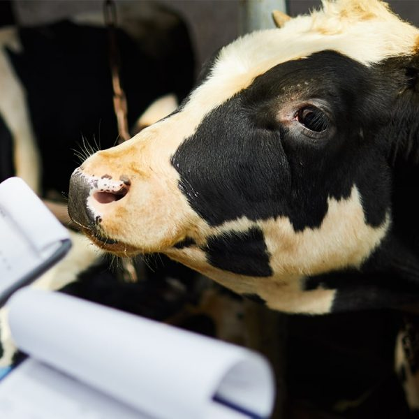 Farm4Trade - The importance of record keeping