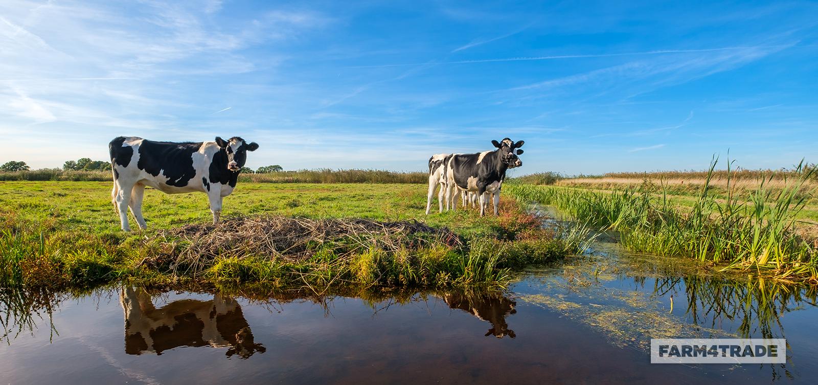 The impact of ammonia emissions on biodiversity - Blog Farm4Trade